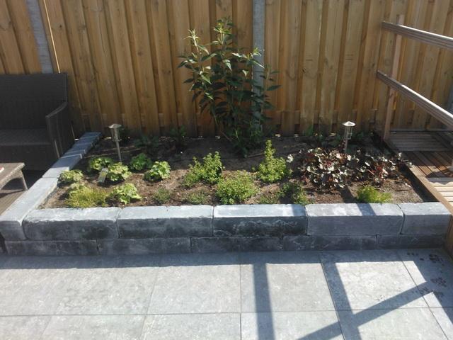 Aanleg achter met natuursteen, vijver, en aanplanten borders (11)